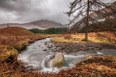 The place.... (Einir Wyn Leigh) Tags: scotland landscape beauty nature natural river water happy scenery forest uk tree storm colour tranquility weather brown orange wet winter