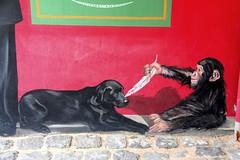 Restaurant Paul Bocuse # 2 (just.Luc) Tags: mural graffiti grafitti urbanart streetart chien hond hund dog chimpansee monkey pluim feather plume veer feder pluma red rood rouge rot cobbles kasseien restaurant mur muur mauer wall france frankrijk frankreich frança francia collongesaumontdor