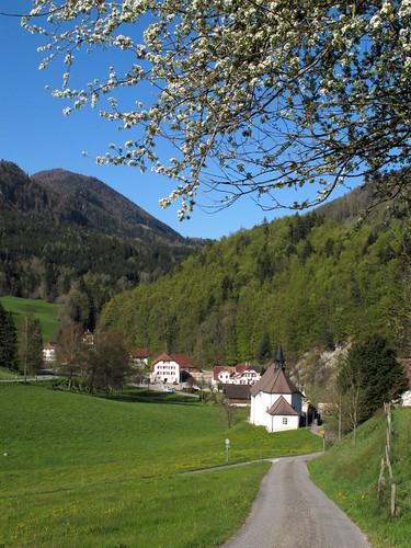 Schönenberg_002