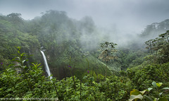 Caribbean Cloud Forest (Alastair Marsh Photography) Tags: clouds cloudforest cloudformations cloud forest rainforest rain rainfall raining jungle trees tree mist misty water waterfall waterspray landscape landscapephotography costarica catarata cataratadeltorro deltorro caribbean centralamerica