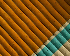 (Kradizath) Tags: parallel fence texture texturephotography abstract canon canon50d nails wood pittsburghzoo orange blue