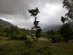 Rajmachi Trek - Natural Click during the trek
