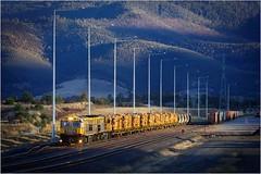 TR06 sitting at Brighton Hub on train 34 (Trains In Tasmania) Tags: australia tasmania tasrail brighton brightonhub railway railyard trainsintasmania stevebromley tr trclass tr06 caterpillar diesellocomotive telephoto latelighting hills hill train logtrain 34 no34 freighttrain ef35350mm13556lusm canoneos550d