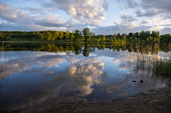 skies (Stefano Rugolo) Tags: stefanorugolo pentax k5 sky reflections summer tones light hälsingland sweden sverige lake clouds evening nature trees skies landscape water serenity stillness smooth