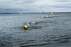 "I Mityng Triathlonowy - Nowe Warpno 2017 (150) • <a style=""font-size:0.8em;"" href=""http://www.flickr.com/photos/158188424@N04/36465616120/"" target=""_blank"">View on Flickr</a>"