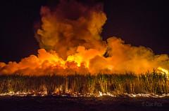 Sugar Cane Fire - Childers (1) (Cisc Pics) Tags: sugarcane fire childers queensland australia childersfestival isiscentralsugarmill tour blaze flames night nikon nikkor dx d7000 1024mm iso