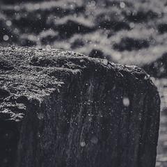 Rain on Stone (room76com) Tags: stone rain water bw black white blackandwhite shine light flicker new fall autumn sun sunlight nikon nikkor nature texture surface rock moss wet meadow grass shower wasser stein art macro