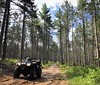 Michigan trail riding (hondasniper) Tags: outdoors michigan relaxing peaceful tall trees talltrees trailriding trails offroad fourwheeler hondaatv honda atv