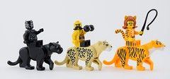 Felines parade💪🐯 (Alex THELEGOFAN) Tags: lego legography minifigure minifigures minifig minifigurine minifigs minifigurines parade felines leopard wrestler tiger panther circus collectible series black marvel super heroes civil war animal animals
