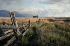 middle of nowhere (laura's Point of View) Tags: landscape mountains tetons rockymountains openspaces fence pasture field meadow ranch farm house barn autumn texture art artistic gold wyoming gtnp grandtetonnationalpark nationalpark west western vintage old peaceful wander sonya7r