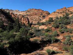 Zion NP_002 (Thomas Jundt + CV) Tags: canyonoverlooktrail nationalpark usa utah zionnp