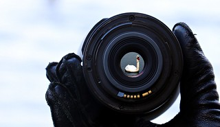 Lens focus on lake