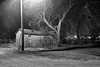 Fenced Home (JWDonley_photos) Tags: wood alley urban decay oklahoma night nightphotography blackandwhite trees chickasha