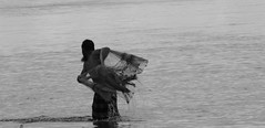Casting fishing net. (Sadot Arefin) Tags: river castnet fisherman bangladeshifisherman buriganga dhaka bangladesh fishing style cinematic blackandwhite blackwhite mohammadpur বাংলাদেশ ঢাকা canon canonpowershot sx50 canonpowershotsx50hs powershot powershotsx bridgecamera pointnshoot pointshoot