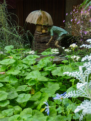 Filling the Pond (Steve Taylor (Photography)) Tags: pond umbrella hose rain wellingtons boots shorts bronze art sculpture garden green brown blue mauve white metal boy lad child kid asia city singapore plant flower perspective flowerdome gardensbythebay basket wicker