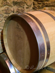 Sauternes (Aurélie RIVERE) Tags: bordeaux bordelais vins sauternes