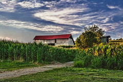 IMG_0229tzl1scTBbLGER (ultravivid imaging) Tags: ultravividimaging ultra vivid imaging ultravivid colorful canon canon5dmk2 clouds sunsetclouds scenic rural fields farm landscape lateafternoon latesummer twilight barn path painterly pennsylvania pa