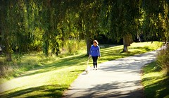 A walk in the park (Trinimusic2008 -blessings) Tags: trinimusic2008 judymeikle nature humberbayparkw park neighbourhood september 2017 outdoors toronto to ontario canada willowtrees light shadow candid woman dog