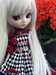 All Around Me (♪Bell♫) Tags: pullip optical alice bell groove doll