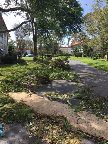 """Hurricane Irma 9-10-17 • <a style=""""font-size:0.8em;"""" href=""""http://www.flickr.com/photos/94426299@N03/37044772011/"""" target=""""_blank"""">View on Flickr</a>"""