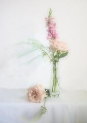 Bouquet (Smiffy'37) Tags: 7dwf flowers softfocus pink stilllife fineart