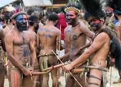 3 m3n with penis guards (kthustler) Tags: goroka singsing papuanewguinea tribes huliwigmen mudmen