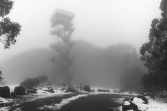 Tower in the mist (Derek Midgley) Tags: img7748 observation tower summit mt donna buang