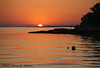 Sunset on the Water (A.Maltese) Tags: stonycreek thimbleislands sunset seascape ocean beach tree buoy scenic outdoor