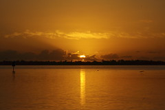 SUNRISE ON THE INDIAN RIVER (R. D. SMITH) Tags: sunrise river sun indianriver florida water canoneos7d