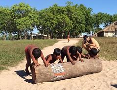 Kamayurá log rolling . . . (ericrstoner) Tags: kuarup ipavu kamayurá kamaiurá