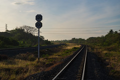 soft light in the morning (Flutechill) Tags: railroadtrack transportation traffic train road travel direction street journey steel roadsign outdoors nature station sky semaphore railroadcrossing modeoftransport sign vanishingpoint lopburi traveldestinations thailand morning