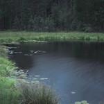 Small moody lake thumbnail