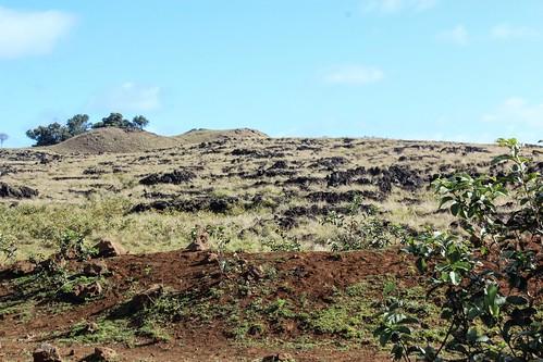 Volcanic rocks near Ane Te Pahu, Rapa Nui