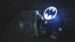 Signaling (3rd-Rate Photography) Tags: batman commissionergordon jamesgordon police gotham gothamcity batsignal light spotlight dccomics toy toyphotography actionfigure batmantheanimatedseries jacksonville florida canon 50mm 5dmarkiii 3rdratephotography earlware