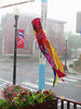 And the Rain Came Down (Hodgey) Tags: flowers machias peacepoledownpour thunder lightning windsock open rain