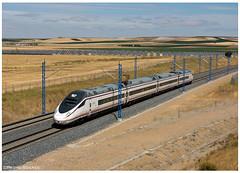 Matapozuelos 19-08-16 (P.Soares) Tags: comboio comboios train trains tren transportesxxi terminalintermodal portugalferroviário lusocarris passageiros renfe