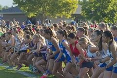 Ready. . . Set. . . Go (aaronrhawkins) Tags: crosscountry run girls runners start race orem utah highschool teenagers startingline time fast timpview aaronhawkins