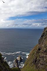 Kaldeklova -|- Bird mountain (erlingsi) Tags: runde rundeisland fjell klipper mountains steep bratt ocean norway møreogromsdal sunnmøre havet bird fugl explored kaldekloven