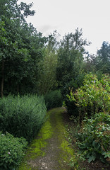 Streekcentrum - Ooievaarsdorp Liesvelt. (Eduard van Bergen) Tags: holland niederlande netherlands dutch nederland water alblasserwaard molenwaard liesveld liesvelt still picture photo foto photograph road path fields trees wetering outdoor landscape grass field grassland farm boerderij frau antje lifestock farmer wife apron cheese living life working serene sky meadows light ancient old vintage farms land horizon polder agriculture sloot blue green white eden sheep lush veld weide weiland luft clouds ooievaarsdorp streekcentrum storks storche pentax k5 nursery stork lady dame stroll allee laantje grootammers