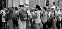 La comitiva (r_evolution63) Tags: padova padua veneto italia italy europa europe provinciadipadova basilicadisantantonio santantonio santo antonio chiesa church basilica cathedral turisti tourists pellegrini pilgrims gente people persone persons città city urban piazza place piazzadelsanto strada street streetlife streetphotography comitiva group gruppo bn bw bianconero blackwhite grigio grey monocromo monochrome sony dschx400v