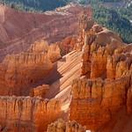 GLOW -Cedar Breaks National Monument, Utah thumbnail