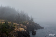 Foggy Sheringham Point (Don Dunning) Tags: britishcolumbia canada canadianprovince fog mist ocean storm straitofjuandefuca vancouverisland water