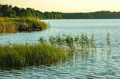 Where is the angler? (Grzesiek.) Tags: jeziorogieret giby lake podlasie