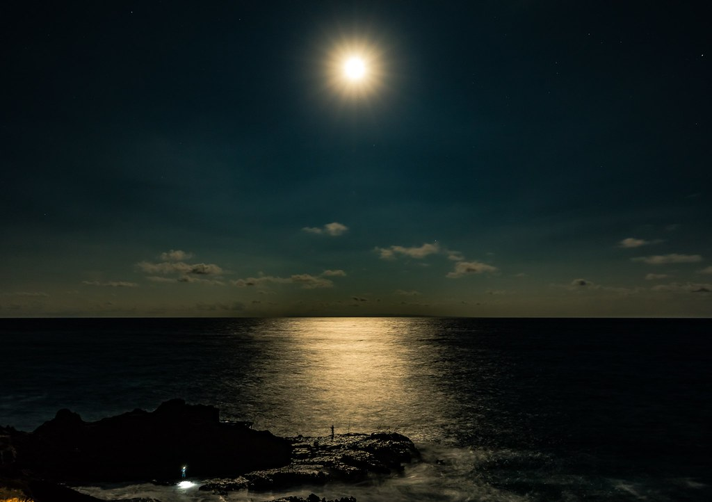 The world 39 s best photos of fishing and hawaii flickr for Hawaiian moon fish