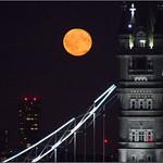 Moon Rising thumbnail