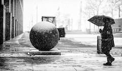 Back to work (mkc609) Tags: street streetphotography bw blackandwhite blackwhite urban candid nyc newyork newyorkcity snow umbrella ball monochrome people