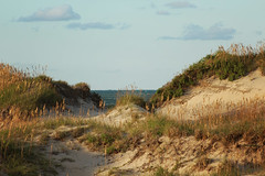 Dune (Fire At Will [Photography]) Tags: 2017 fw atlantic banks beach campground camping carolina fire inlet nc north obx ocean oregon outer photo photography september summer vacation will