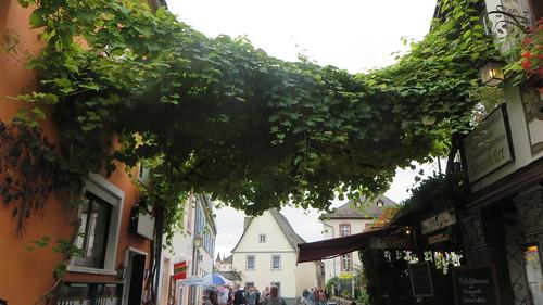 Rüdesheim am Rhine