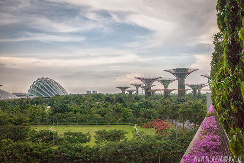 Widok na ogrody Garden by the Bay