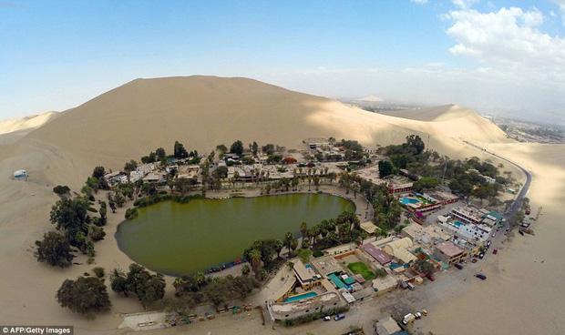 Không ai ngờ rằng, giữa sa mạc cằn cỗi bậc nhất thế giới lại có một thị trấn xanh tươi đến vậy - Ảnh 7.